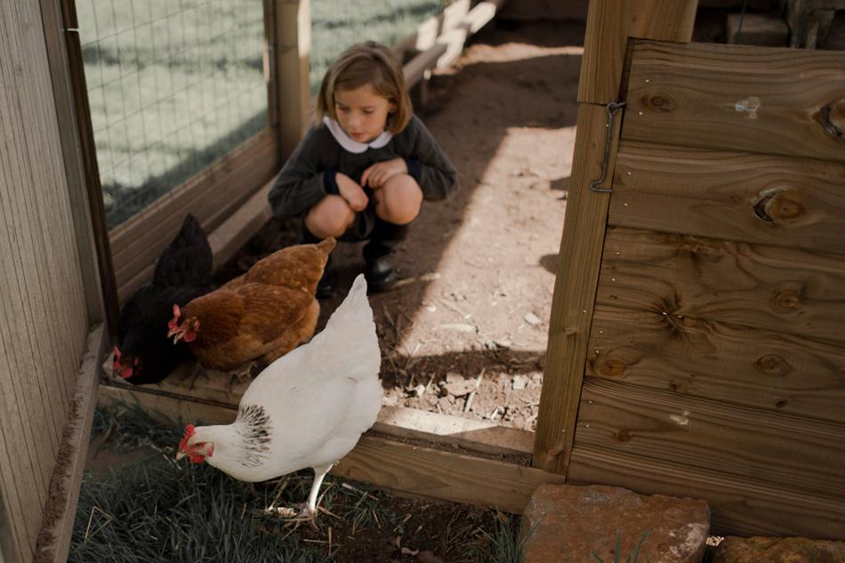 photographie poules et enfant