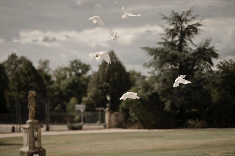 lacher de colombes mariage